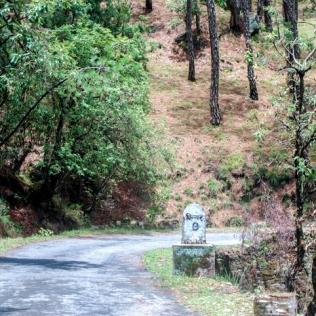 Binsar ©KartikayaNagar