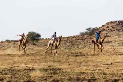 Camel Race. ©KartikayaNagar